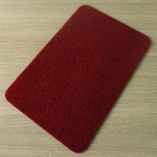 Polyester Non Slip Door Mats DL-WE05